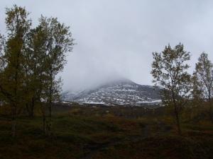 """The Peak"" - covered in the fog..."