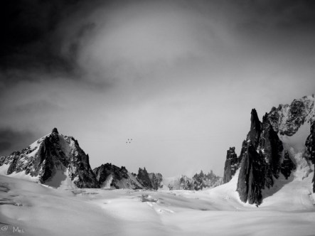 Glacier de Geant...