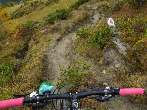 Meinen Bikebuddy Erwin hat es auch erwischt ;-)