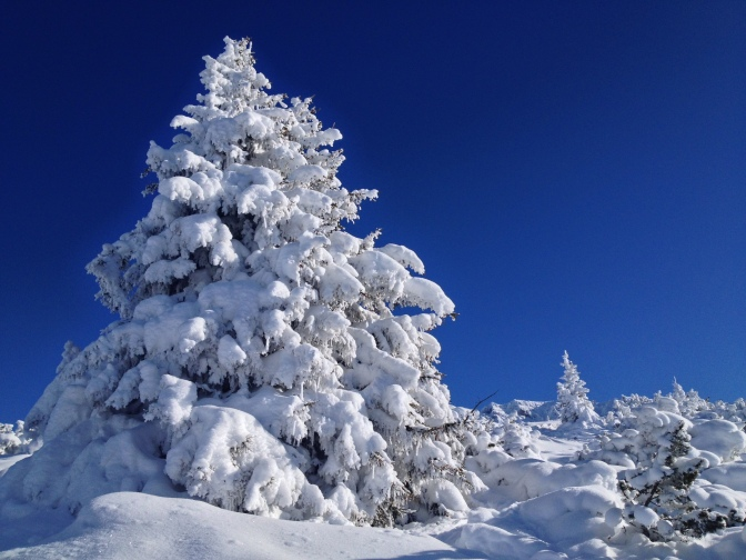 Endlich Winter…